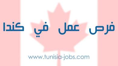 صورة فرص عمل جديدة في كندا
