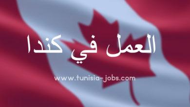صورة عروض شغل جديدة في كندا لإنتداب عديد الأعوان من تونس