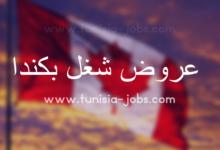 Photo of سلسلة مطاعم كندية تنتدب أعوان من تونس
