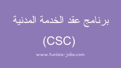 Photo of برامج التشغيل : برنامج عقد الخدمة المدنية (CSC)