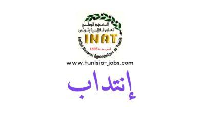 Photo of المعهد الوطني للعلوم الفلاحية بتونس يفتح باب الانتداب